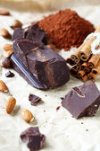 Large piece of chocolate and cinnamon — Stock Photo