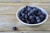 Wild blackberries in a bowl — Stock Photo