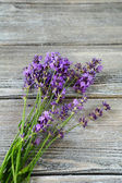 Bundle of lavender on gray boards — Stock Photo
