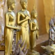 Standing gold buddha statues in Wangvivagegaram Temple, Karnjana — Stock Photo