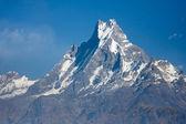 Beautiful view of Annapurna range, Himalayan mountains, Nepal — Stock Photo