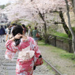 Japanese girl in traditional dress called Kimono with Sakura blo — Stock Photo