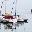 Sailboats at the dock with some people fishing in background — Stock Photo