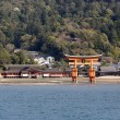 Ancient gate called Torii in Miyajima island, Japan — Stock Photo