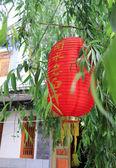 Red traditional chinese style lantern with green leaves — Stock Photo