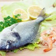 Stock Photo: Gilthead