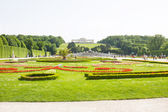 Garden of Schonbrunn Palace in Wien, Austria — Stock Photo