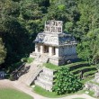 Palenque, Mexico — Stock Photo #37608493