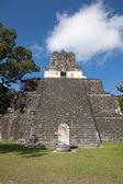 Tikal, Guatemala — Stock Photo