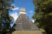 Tikal, Guatemala — Stock Photo