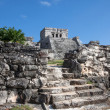 Tulum, mexico — Stock Photo #41886099