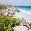 Tulum, Mexico — Stock Photo #41887205