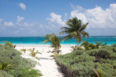 Tulum beach, Mexico — Stock Photo