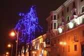Minsk city, beautifull tree. — Stock Photo