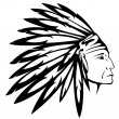 Stock Vector: North AmericIndian