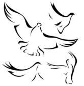 Doves design — Stock Vector