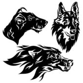 Dogs design — Stock Vector