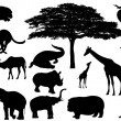 Stock Vector: Africnature