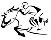 Equestrian sport — Stock Vector