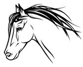 Running horse head - realistic vector illustration — Stock Vector