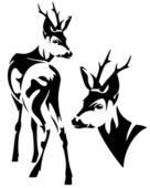 Roe deer — Stock Vector