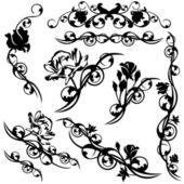 Roses design set — Stock Vector