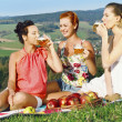 Girls on picnic in mountains — Stock Photo #27048343