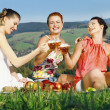 Girls on picnic in mountains — ストック写真