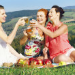 Girls on picnic in mountains — Stock Photo #27048419