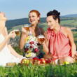 Girls on picnic in mountains — Stock Photo #27048425