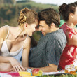 Friends on picnic — Stock Photo #27049019