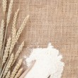 Wheat ears and flour — Stock Photo