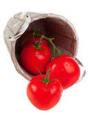 Tomatoes — Zdjęcie stockowe