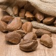 brazil nuts — Stock Photo