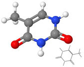 Thymine molecule with chemical formula — Stock Photo
