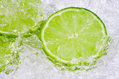 Lime on ice — Stock Photo
