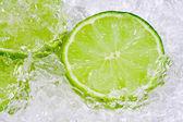 Lime på is — Stockfoto