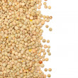 Lentil border — Stock Photo #34688059