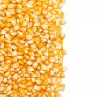 Corn kernels — Stock Photo #34688069