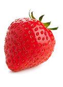 One strawberry — Stock Photo