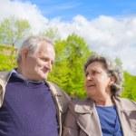 Elderly couple — Stock Photo #25158427