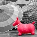 παιχνίδι στη βροχή — Φωτογραφία Αρχείου