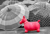 Toy in the rain — Stock Photo