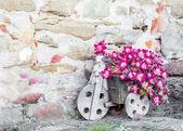 Kar met bloemen — Stockfoto