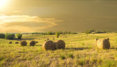 Bales of hay on a farm at sunset in Tuscany (Italy) — Stock Photo