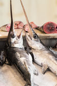 Swordfish in a fish market in Sicily — Stock Photo
