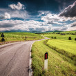 Road in the countryside — Stock Photo #46039461