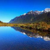 Mirror Lakes, South Island, New Zealand — Stock Photo