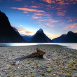 Stock Photo: Breathtaking view at Milford Sound, South Island, New Zealand