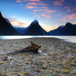 Beautiful sunset view at Milford Sound — Stock Photo